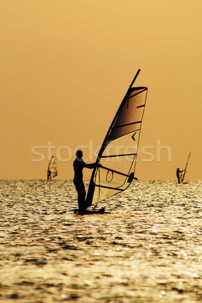 Silhouettes of a windsurfers on waves of a gulf  Stock photo © acidgrey