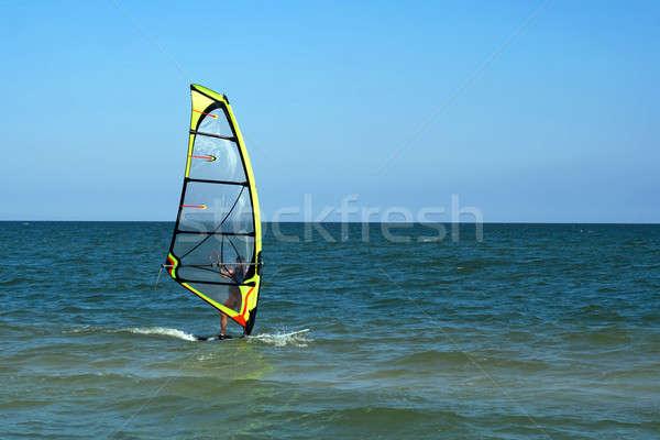 surfer Stock photo © acidgrey