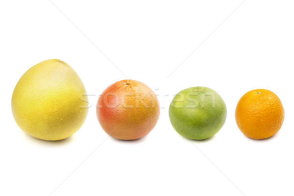 Pomelo, grapefruit, sweetie, orange Stock photo © acidgrey