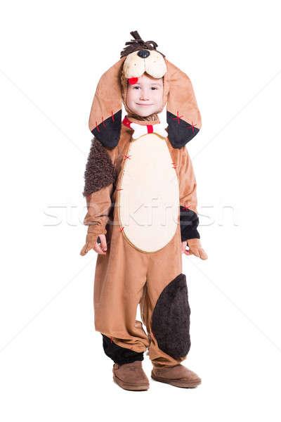 Сток-фото: мало · мальчика · собака · костюм · изолированный · белый