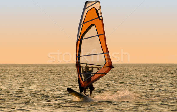 Silhouette of a windsurfer on the sea Stock photo © acidgrey
