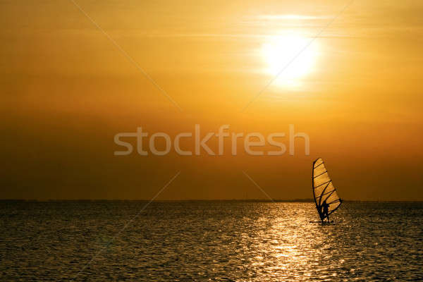 Windsurfer Stock photo © acidgrey