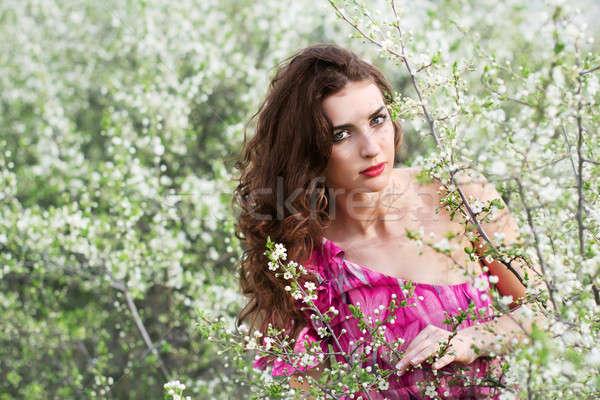 Brunette bloei bomen mooie roze Stockfoto © acidgrey