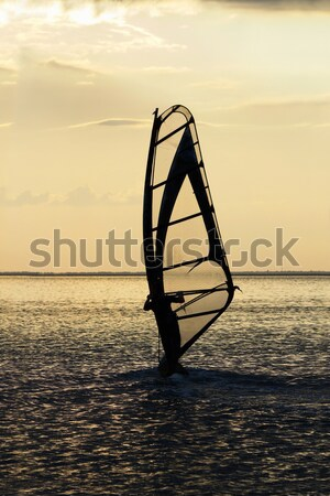 Silhouette of a windsurfer on waves of a sea  Stock photo © acidgrey