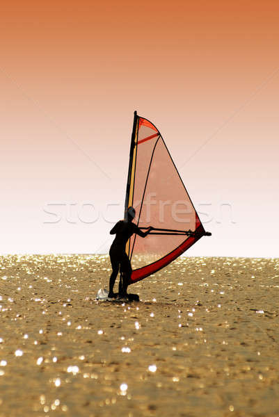 Silhouette a women on a windsurf on waves Stock photo © acidgrey