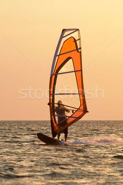 Windsurfer on waves of a gulf on a sunset Stock photo © acidgrey
