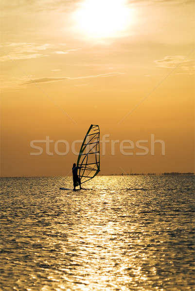 Silhouette of a windsurfer on a sunset Stock photo © acidgrey
