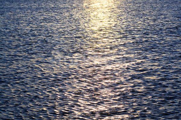 Sea surface Stock photo © acidgrey