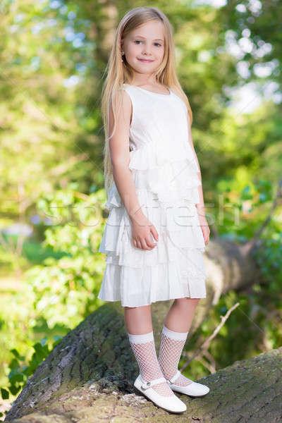 Little girl in white dress Stock photo © acidgrey