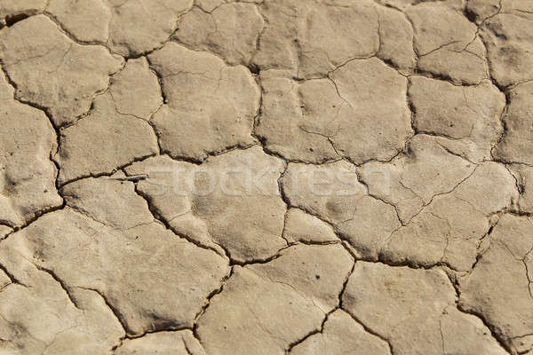 Closeup Of A Dry Arid Desert Floor Stock photo © actionsports