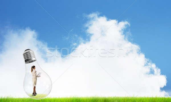 Alternative energy concept Stock photo © adam121