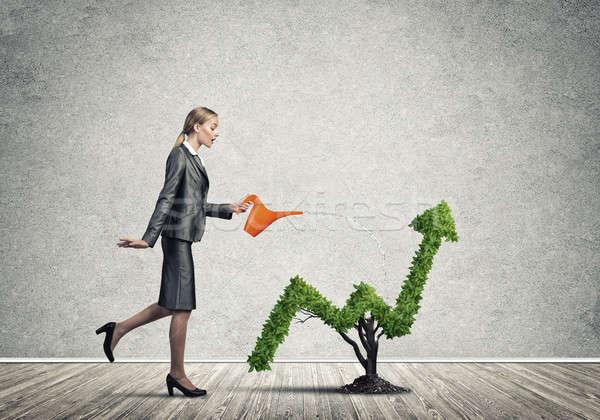 Dinero crecer jóvenes atractivo mujer de negocios Foto stock © adam121