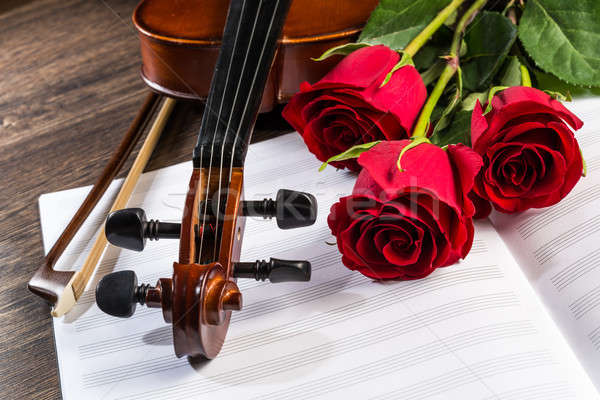 Violin, rose and music books Stock photo © adam121