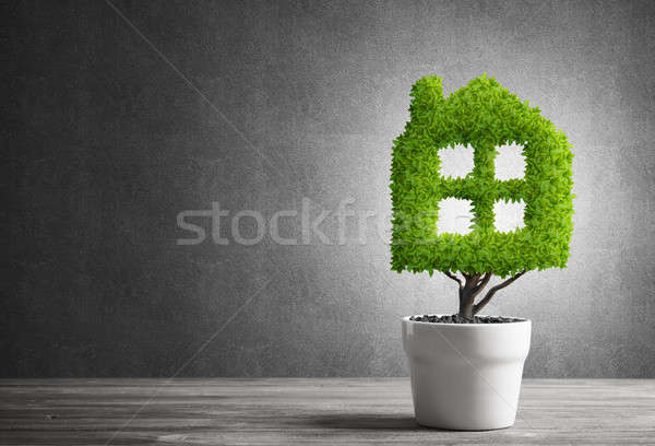 Concept of ecology recycling and eco construction with plant in pot Stock photo © adam121