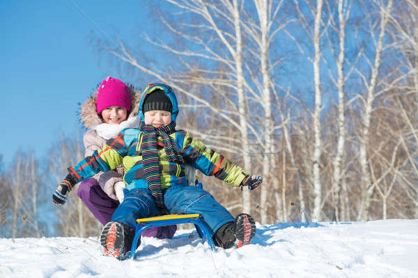 Inverno attività due cute ragazzi equitazione Foto d'archivio © adam121