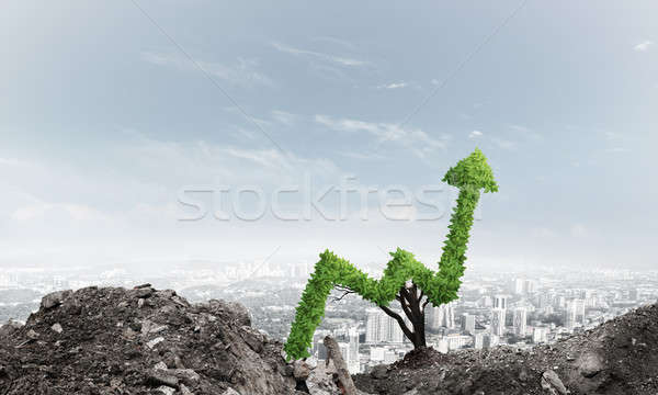 Stock photo: Right investment for getting income