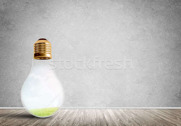 Ampul oda cam beton boş oda eco Stok fotoğraf © adam121