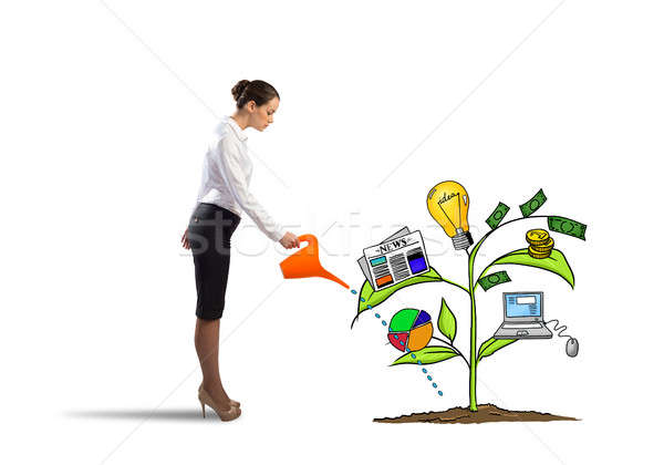 Make your income grow Stock photo © adam121