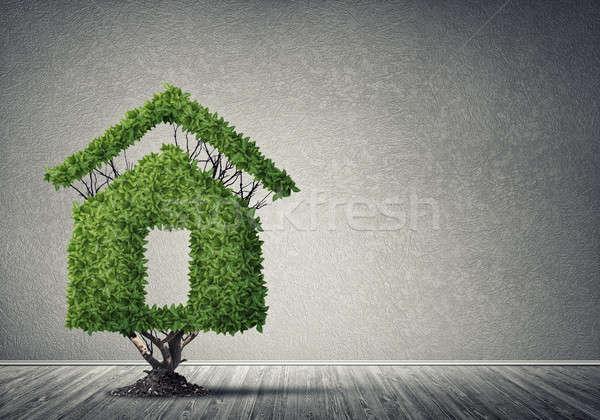 Imóveis investimentos casa árvore Foto stock © adam121