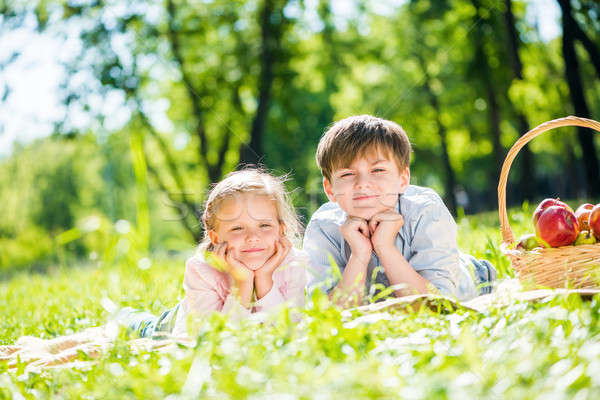 дети пикника мало прелестный детей парка Сток-фото © adam121