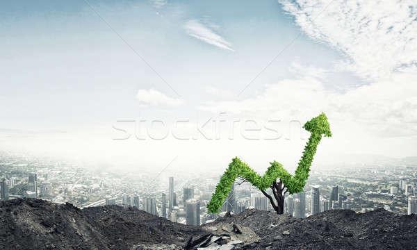Doğru yatırım gelir pazar büyüme başarı Stok fotoğraf © adam121