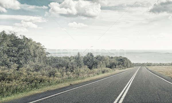 Encontrar manera naturales verano paisaje asfalto Foto stock © adam121