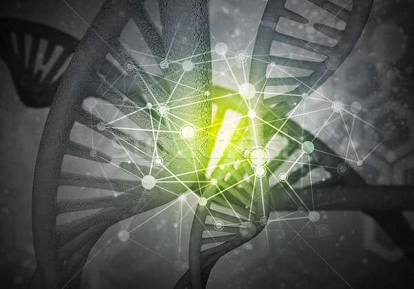 DNS molekulák háttér kép kutatás 3D Stock fotó © adam121