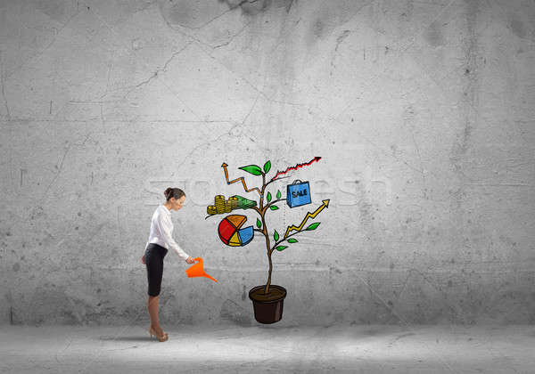Make your income grow Stock photo © adam121