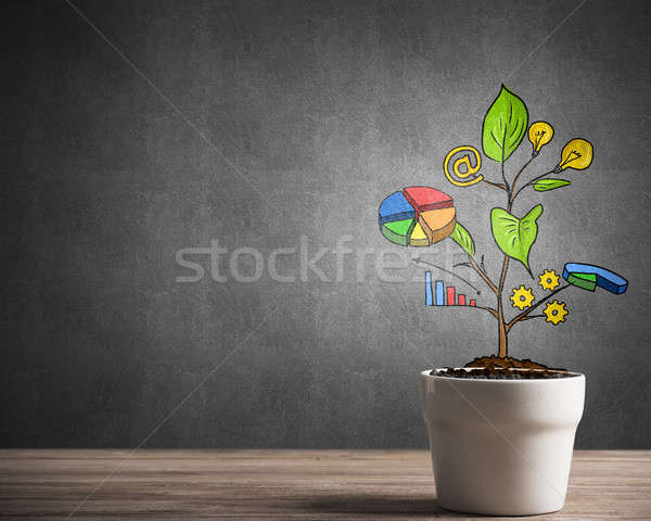 Drawn income tree in white pot for business investment savings and making money Stock photo © adam121