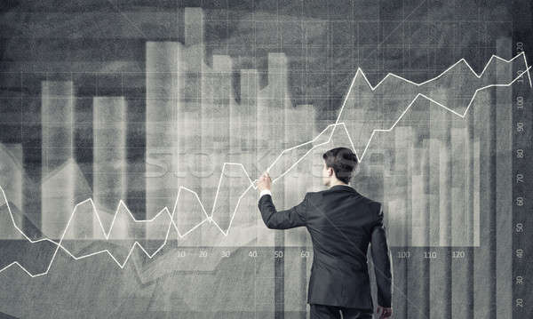 Dynamics of financial growth Stock photo © adam121