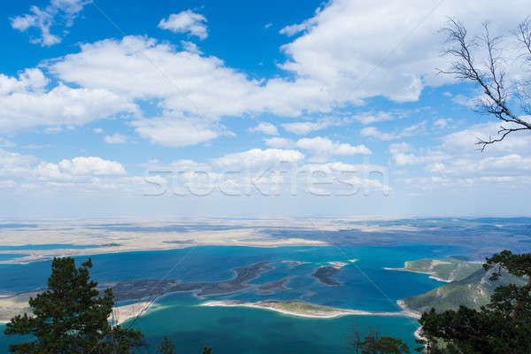 Kazahsztán festői természetes tájkép kék fa Stock fotó © adam121