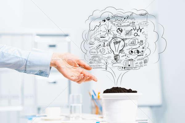 Nő jövedelem kéz üzletember mutat terv Stock fotó © adam121