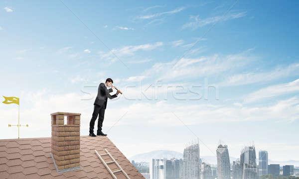 Senhor patrão tijolo telhado pesquisar algo Foto stock © adam121