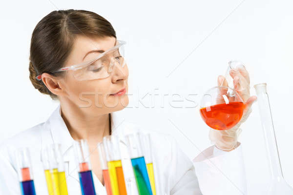 Stock photo: GMO check