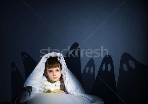 boy under the covers with a flashlight Stock photo © adam121