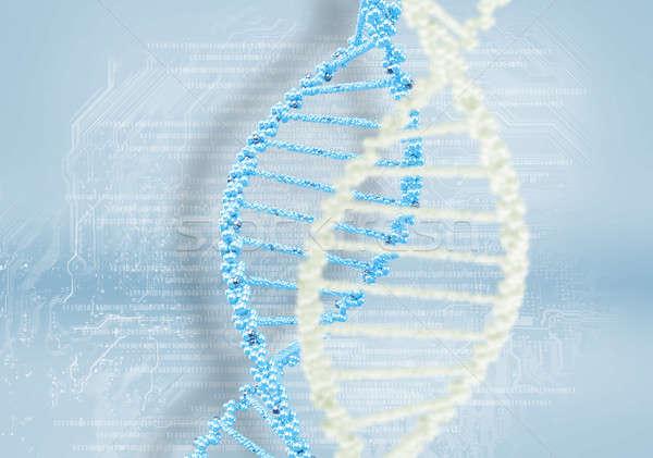 Dna elica colorato scientifica abstract medici Foto d'archivio © adam121