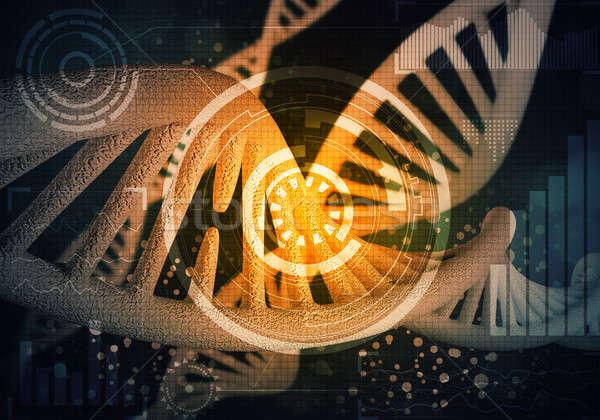 DNA molecules background Stock photo © adam121