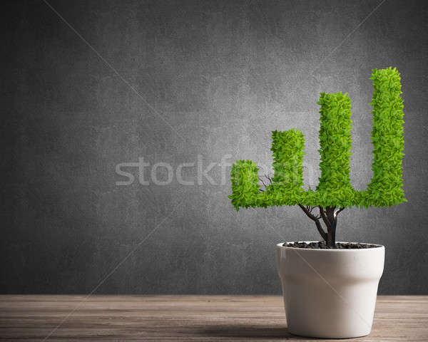 Concept of investment income and growth with tree in pot Stock photo © adam121