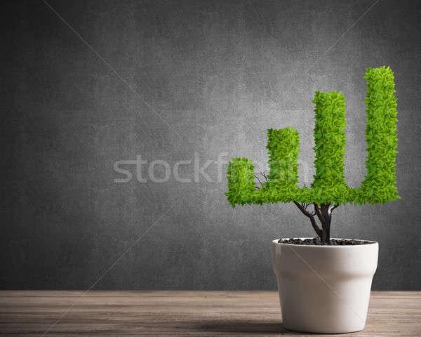 Inversión ingresos crecimiento árbol olla pequeño Foto stock © adam121