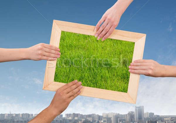 çerçeve çim insan eller Stok fotoğraf © adam121