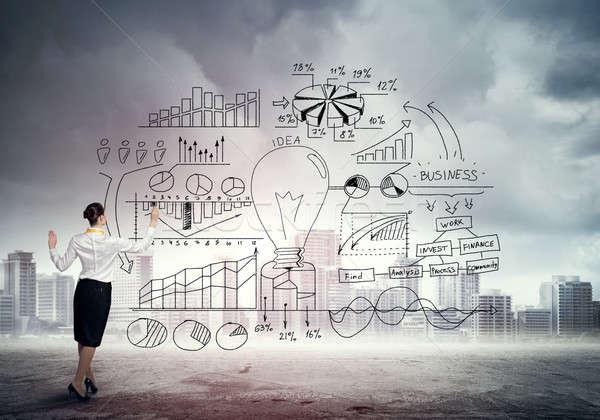 Marketing successful plan Stock photo © adam121