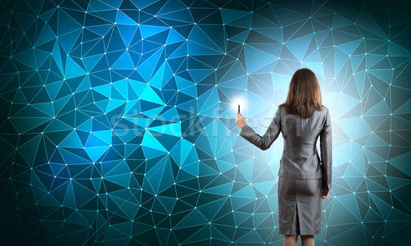 Sozialen net Geschäftsfrau stehen zurück Stock foto © adam121
