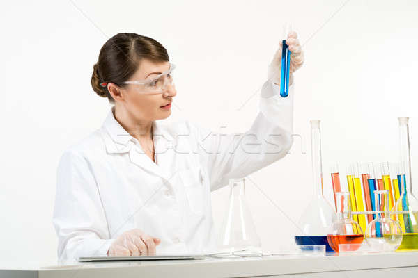 GMO check Stock photo © adam121