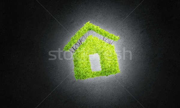 öko építészet üvegház sötét zárt üzletember Stock fotó © adam121