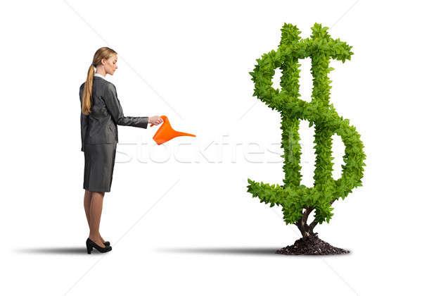 Stock fotó: Gyártmány · pénz · nő · fiatal · vonzó · üzletasszony