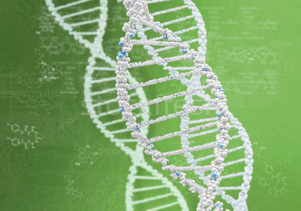 DNA helix against the colored background Stock photo © adam121
