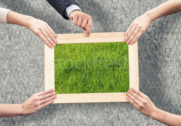 Greenery concept Stock photo © adam121