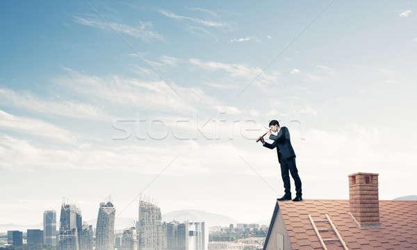 Foto stock: Senhor · patrão · tijolo · telhado · pesquisar · algo