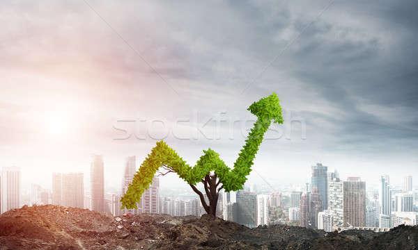 Inwestycja dochód rynku wzrostu sukces Zdjęcia stock © adam121