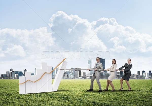 Werken samenwerking diagram groeien Stockfoto © adam121